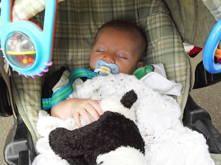 Tuckered out with stuffed panda