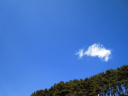 八戸 春の海 4