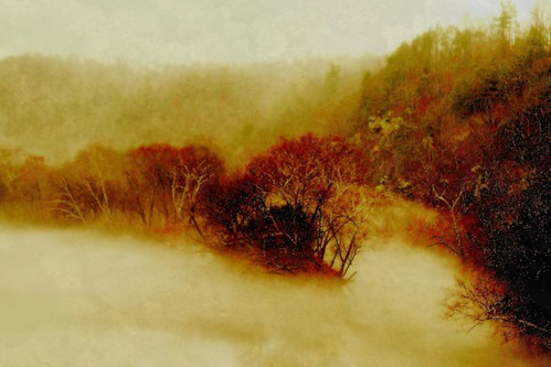 Late Autumn Mist