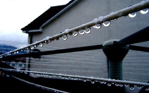 Brilliant Raindrops