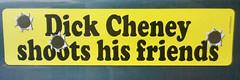 Funny Dick Bumper Sticker