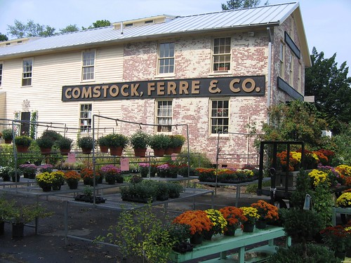 Comstock Ferre Seed Co, Wethersfield, CT