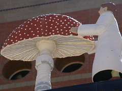 tiny scientist, big mushroom