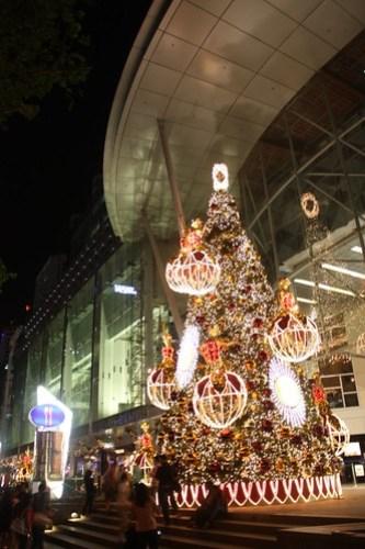 [S'pore Training] Christmas Tree