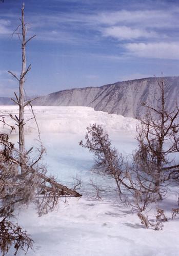 US Yellowstone GeyserBasin1