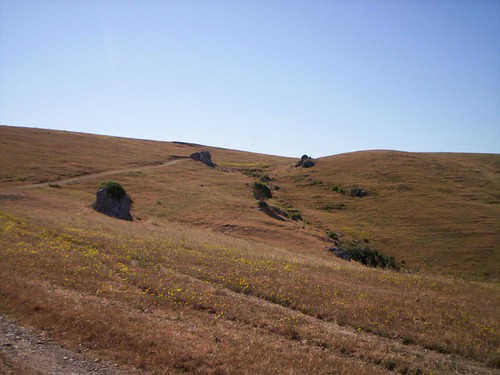 Bolinas Ridge Trail.JPG