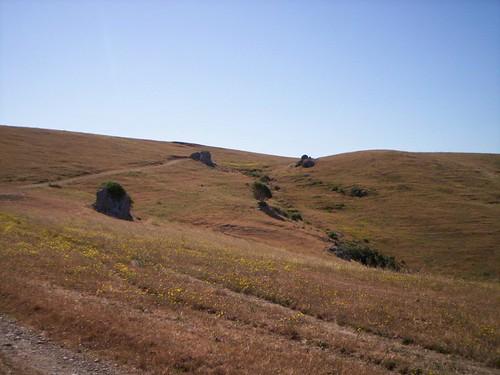 Bolinas Ridge Trail.JPG