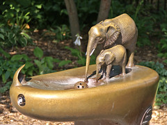 Lincoln Park Zoo Watering Hole