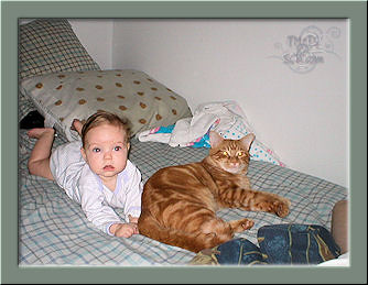 A Cat and His Pet
