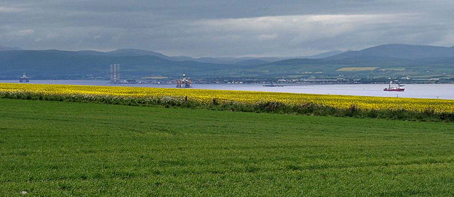 View north from above Cromarty