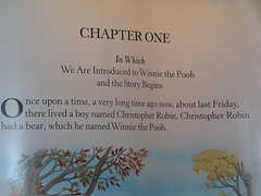 Winnie the Pooh Story