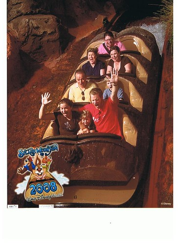 splash mountain screams