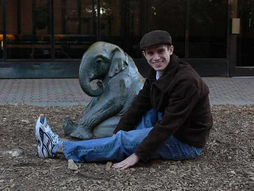 Elephant Matt