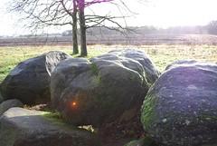 Dolmen in Balloo (Drenthe)