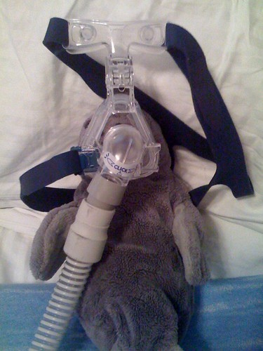 manatee's new CPAP