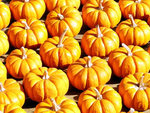 Attack of the Pumpkin Army