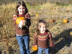sister pumpkins