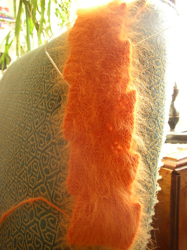 orange rabbit cat scarf sunlit