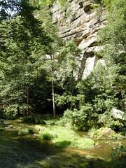 Hrensko sandstone gorges