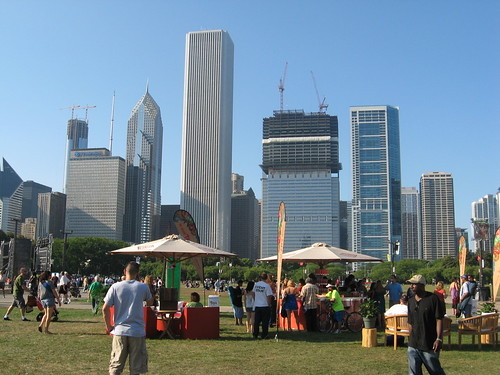 Chicago Skyline by Day