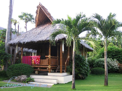 Garden bungalow Pura Vida Resort