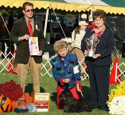 Best of Breed Montgomery County 2008 cropped