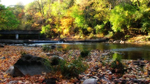 passaic river in fall