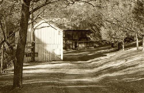 Clean Old Farm