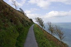 Coast path near Lynton