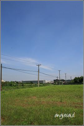 b-20080622_103634.jpg