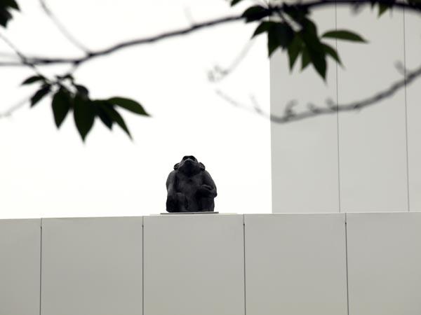 十和田市現代美術館 7