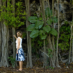 Azure with vines, Hawaii