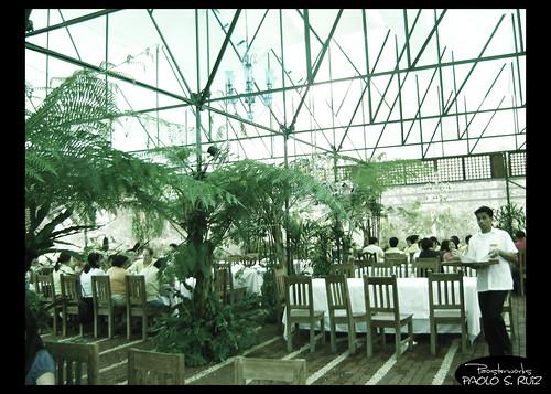 Sonya's Garden, Interior