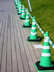 Green cones