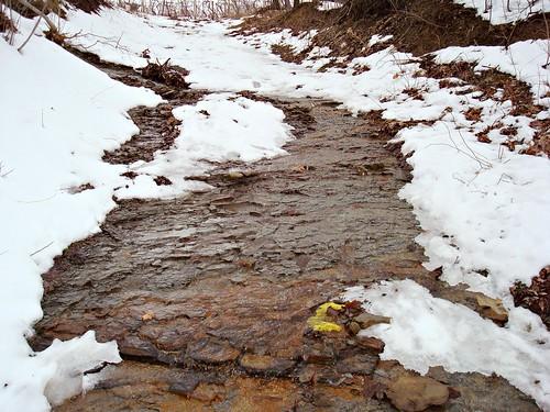 Creek flowing down path