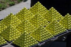 Toxic Golf Balls?