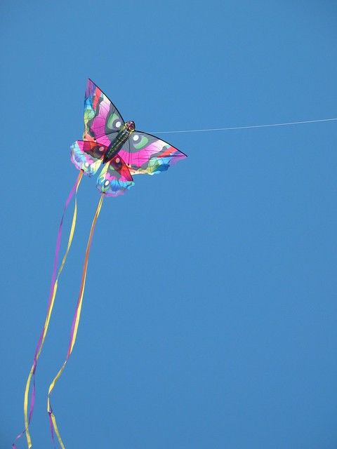 Kites at Kite Flying Festival