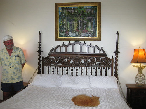 Hemingway´s bed and Hemingway´s cat´s descendant