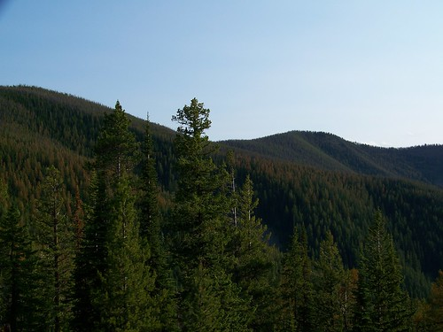 North slope of Sacajawea Peak