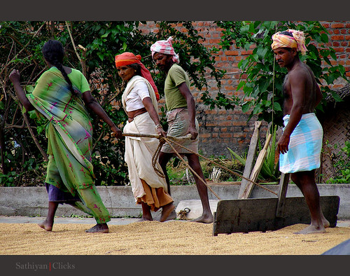 Rice mill workers