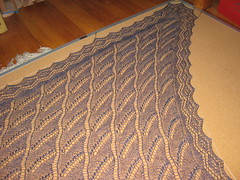Shawl_2008Jun8_LilyOfTheValley_Blocking
