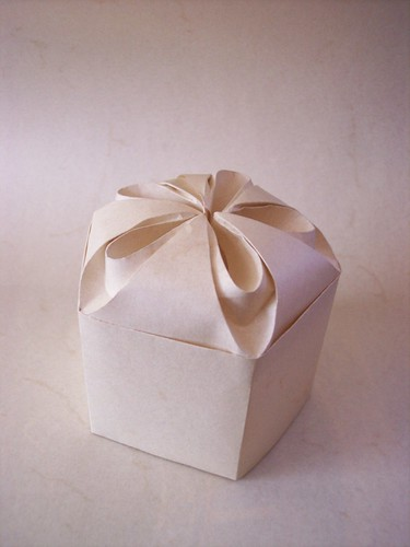 One Rectangle Single Piece of paper no glue curved box by you.