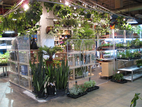Florist, Reading Terminal Market