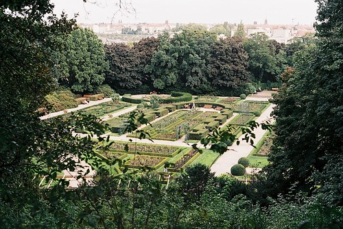 Photo of the rose garden at Humboldthain (long view)