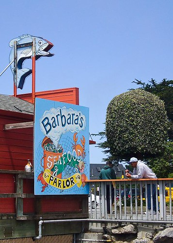 Barb's Fish Trap