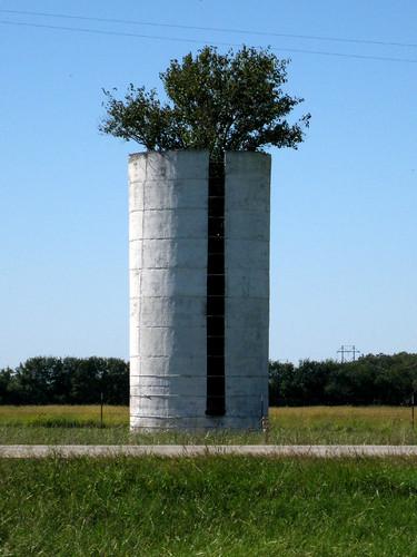 silo tree
