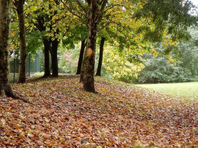 definetly autumntime.