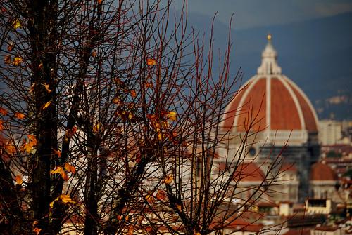 Firenze d'autunno