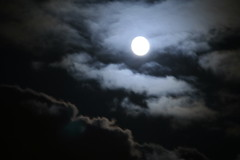 Bright_Ful_Moon_05