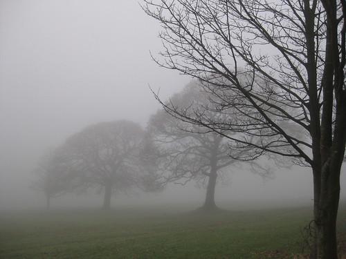 Lancaster University Fog